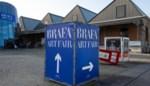 Brusselse kunstbeurs Brafa houdt corona-editie in 126 galerijen over de wereld