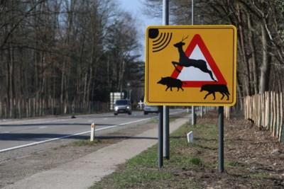 Na laatste aanrijding met wolf wordt N76 met wilddetectiesysteem beveiligd