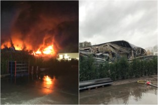 Brand legt loods van afvalverwerkend bedrijf in de as: oorzaak wellicht zelfontbranding