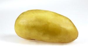 Opnieuw nieuwe CEO voor aardappelsector, nadat de vorige koos voor zitje in Europees parlement