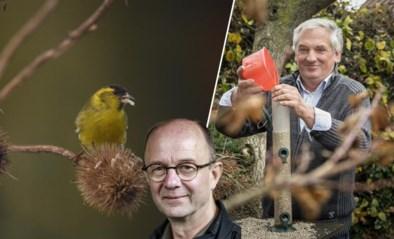 Tuinvogels krijgen het steeds lastiger, maar daar kan je iets aan doen: een smultuin voor vogels