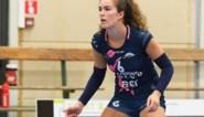 """Felice Vanassche zet concurrentie onder druk: """"Wij willen als enige ploeg ongeslagen blijven"""""""
