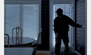 Bewoner betrapt twee inbrekers op heterdaad in woning te Wuustwezel