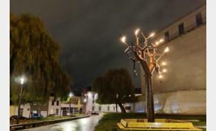Zeven meter hoge vuurboom brengt licht in donkere dagen