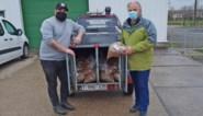 Vzw's krijgen meer dan 500 kilo gratis hondenbrokken