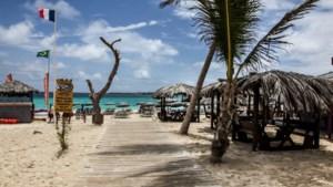 Haai bijt vrouw (39) dood voor kust van eiland Sint-Maarten