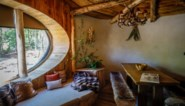 """Pairi Daiza moet resort sluiten voor eindejaarsperiode: """"Onbegrijpelijk"""""""