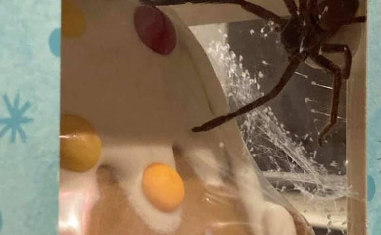 Vrouw doet akelige ontdekking in peperkoeken huis uit supermarkt