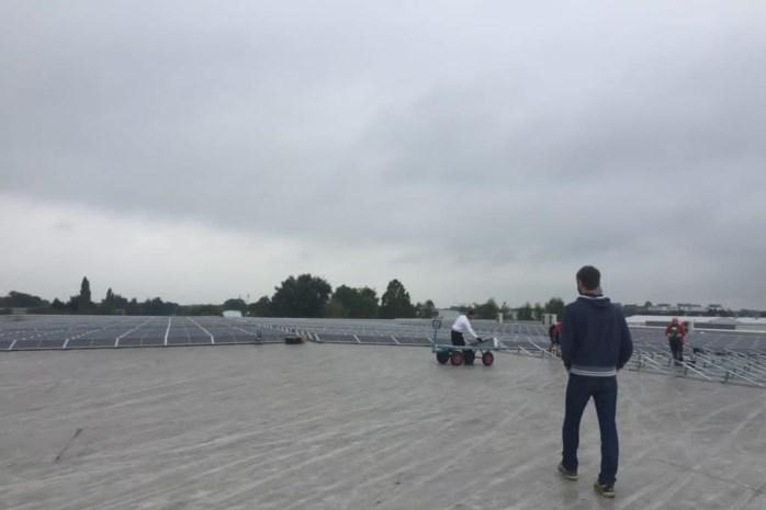 Tomatenbedrijf legt 1.200 zonnepanelen op dak