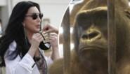 Na de 'eenzaamste olifant' wil zangeres Cher gorilla redden die al 30 jaar in winkelcentrum zit opgesloten