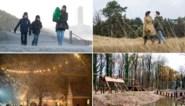 Kerst in Bokrijk of zelfs nog verder terug in de tijd: reis met deze winterwandelingen door eigen land
