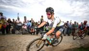 Dieven gaan aan de haal met speciale fiets van Peter Sagan, 25.000 dollar beloning voor tip naar daders
