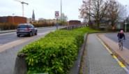 Extra overleg over Gentbruggebrug: in één maand 1.500 reacties op plannen voor de wijk