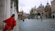 Te duur, te traag en al achterhaald voor het helemaal klaar is: peperduur systeem dat Venetië moest beschermen, blijkt fiasco