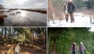 De 6 mooiste winterwandelingen