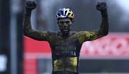 Wout van Aert wint met veel overmacht Wereldbekerveldrit Dendermonde, Mathieu van der Poel tweede op ruime afstand