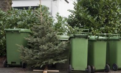 Sorteer de lichtjes en gooi niet alles in een grote zak: zo berg je je kerstboom handig op