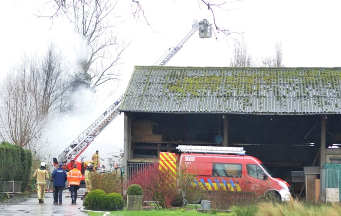 Zware brand in varkensstal: alle 120 dieren afgemaakt en mogelijk asbest vrijgekomen