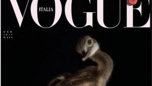 Vogue zet geen topmodellen, maar dieren op de cover