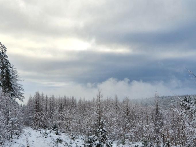 Veel sneeuw, maar ook dit weekend geen toeristen welkom in de Hoge Venen
