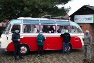 Setrabus uit 1958 wijst weg naar takeaway in Gewestbos