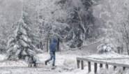 Woensdag kans op eerste sneeuw in Vlaanderen