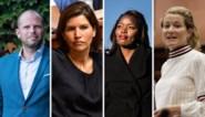 Kapers op de kust voor ondervoorzitterschap N-VA: na Francken en Van Peel klinken ook andere namen steeds luider