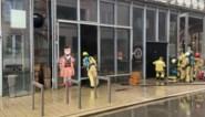 Bierwinkel in Borgerhoutse centers beschadigd door brand