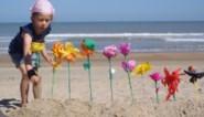 Strandbloemen zijn voortaan Vlaams immaterieel cultureel erfgoed