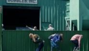 RECENSIE. 'Kajillionaire' van Miranda July: 'Ocean's eleven' met meer dan één hoek af ****