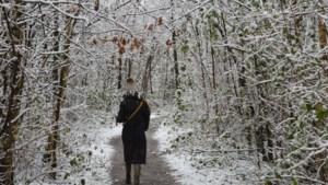 Idyllische wintertaferelen doen dromen van nog meer sneeuw
