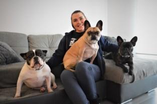 """Nachtzorgkundige start met hondenoppasdienst in haar vrije uurtjes: """"Dieren zijn zo dankbaar"""""""