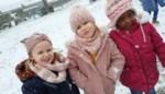 Eerste sneeuw zorgt voor sneeuwpret in De Krekel<BR />