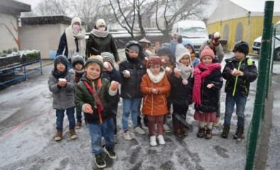 Dun sneeuwlaagje zorgt voor eerste winterse taferelen (én voor sneeuwballengevecht)