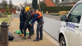 Acht transmigranten die in vrachtwagen zaten, opgepakt in Bilzen