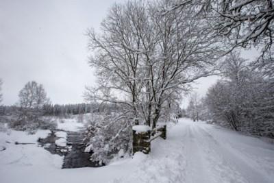 """In heel het land gaat het sneeuwen en Hoge Venen zijn weer open, maar Frank Deboosere waarschuwt: """"Daar ga je echt beter niet naartoe"""""""