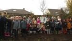 Leerlingen planten vier toekomstbomen