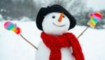 Tips voor de perfecte sneeuwman