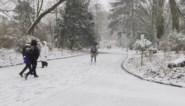 Sneeuwpret lokt Gentenaars naar buiten: hele stad bedekt onder laag sneeuw