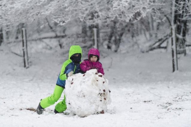 Het gaat sneeuwen tot 5 centimeter dik maar: Agentschap Wegen en Verkeer waarschuwt voor rijm- of ijsplekken