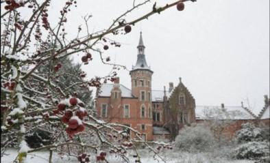 FOTO. U keek er nog meer naar uit dan anders: de eerste sneeuw