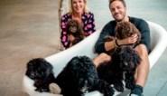 Jens Dendoncker biedt eerste hulp bij irritatie met knuffelbare puppies