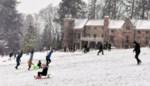 Sneeuwpret in het park van Breivelde
