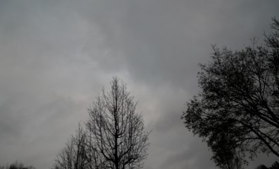 Kwik stijgt volgende week tot 10 graden, maar het blijft regenen
