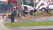 Bewoners geëvacueerd voor gaslek op Nieuw-Sint-Truiden