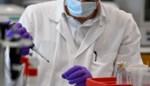 Hier wil Janssen Pharmaceutica lab bouwen om levens van duizenden kankerpatiënten te redden