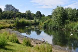 Schijn biedt mogelijk oplossing voor wateroverlast wijk Morkhoven