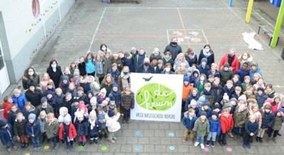 """Basisschool Kruishoutem-Nokere heet voortaan De Kruin: """"Onze school meer uitstraling geven"""""""
