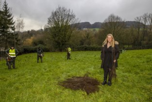 """Griet en Bart planten hectare bomen aan binnen de bebouwde kom van Ronse: """"N60 of niet, het bos komt er"""""""