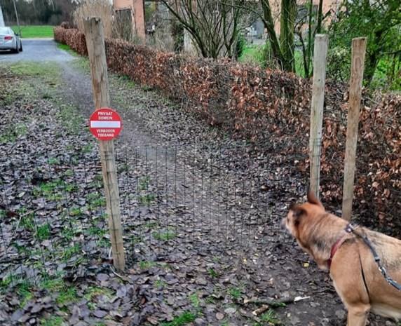 Te veel wandelaars gluren binnen: eigenaar sluit weg af